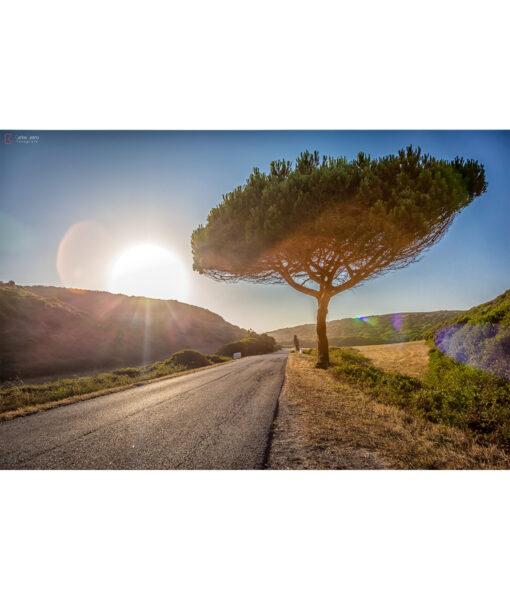 carretera-portugal